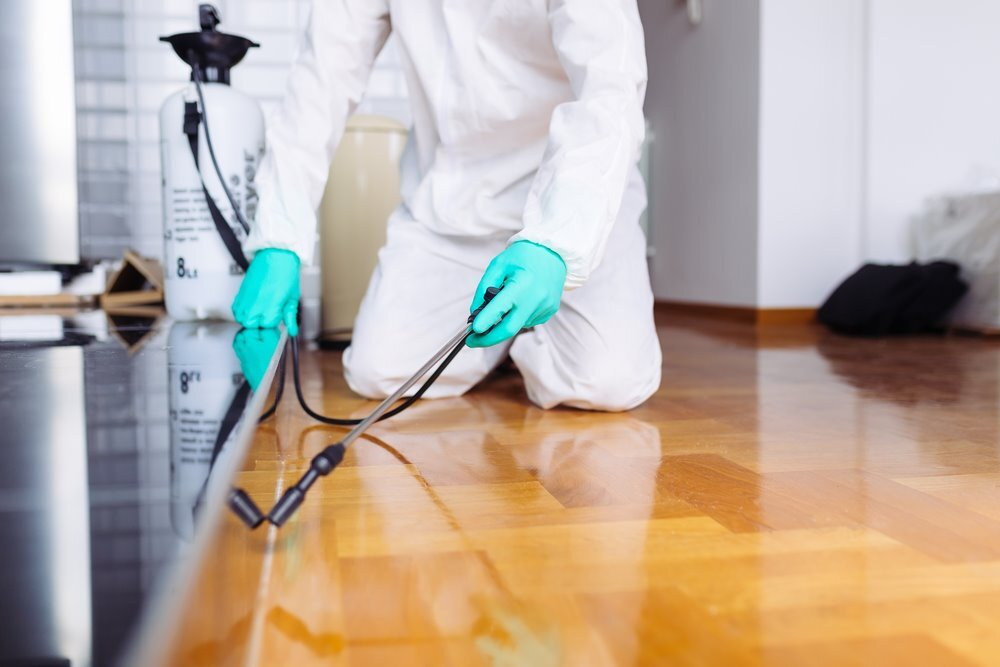 Sugar Land Texas Pest Control Services